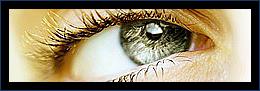 Optic Helvetia - Opticien